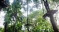 4. হাজারীখিল বন্যপ্রানী অভয়ারন্য ও ট্রি এক্টিভিটি.jpg