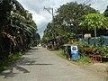 9759Poblacion III Del Carmen, Alaminos, Road 21.jpg