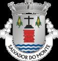 AMT-salvadormonte.png