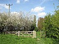 A footpath gate - geograph.org.uk - 1267004.jpg