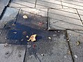 A trip hazard on Philip Lane, Haringey, London 01.jpg