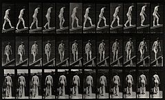 A woman walking up a plank. Photogravure after Eadweard Muyb Wellcome V0048640.jpg