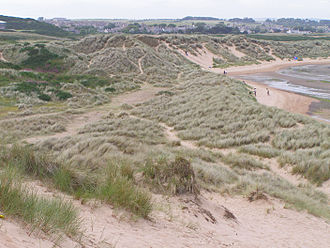 Newburgh, Aberdeenshire - Dunes adjacent to Newburgh on south bank of Ythan Estuary