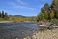 Adams River - panoramio.jpg