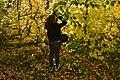 Adolescente prenant une photo des feuilles dorées (22391101117).jpg