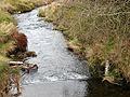 Afon Biga - geograph.org.uk - 289236.jpg