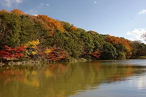 Akashi Castle09n4592.jpg