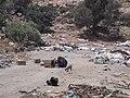 Al Marj escarpment1.JPG