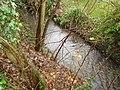 Alder brook - geograph.org.uk - 629892.jpg
