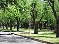 Alexandra Ave, Rose Park.JPG