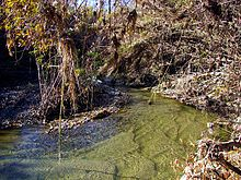 A slow-moving and shallow headwaters of a stream