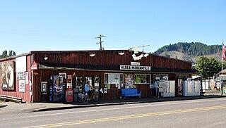 Alsea, Oregon Unincorporated community & census-designated place in Oregon, United States