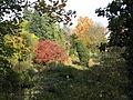 Alter Botanischer Garten in Goettingen.jpg