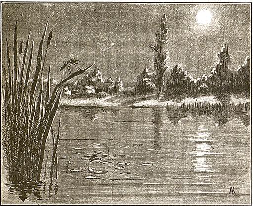 Alyonushka's Fairytales (1900). Illustration p. 18