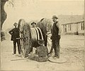 American telephone practice (1905) (14569793540).jpg