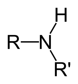 Borrowing hydrogen - Secondary amine