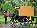 Amish Transport - panoramio.jpg