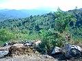 Amlash - panoramio (2).jpg