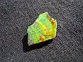 Ammolite (5104142718).jpg