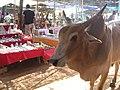 Anjuna Market (943558816).jpg