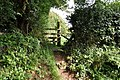 Another view of a stile in the corner of a field between Blackwell Wood and Castle Lane - geograph.org.uk - 2064606.jpg
