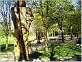April Parc Natural Freiburg Germany - Master Landscape Rhine Valley Photography 2014 Landgut Mundenhof - panoramio (46).jpg