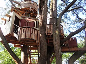 Tree house - Wikipedia on rustic porch designs, bamboo tree house designs, 2 story tree house designs, build tree house plans designs, two trees flooring, one story luxury house designs, simple tree house designs, building treehouses designs, two zip line seat, triangular house designs, custom tree house designs, log house designs, camo house interior designs, cheap tree house designs, livable tree house designs,