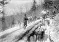 Arbeitsende beim Schützengrabenbau - CH-BAR - 3240453.tif