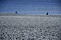 Areia e mar (8441098813).jpg