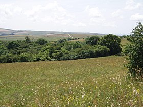 Ashcombe Bottom, East Sussex (geograph 201482).jpg