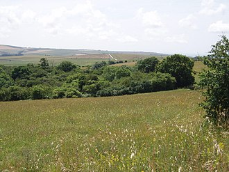 St John Without - Image: Ashcombe Bottom, East Sussex (geograph 201482)