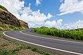 Asphalt in Maui (Unsplash).jpg