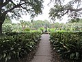 Audubon Park New Orleans St Charles Side 3 July 2020 13.jpg