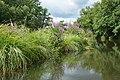 Auray (River)LeLochAmont de la Rivière d'AurayAout2018MorbihanLamiotMF 08.jpg