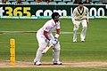 Australia v England (2nd Test, Adelaide Oval, 2013-14) (11287567305).jpg