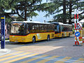 Autopostali Bellinzona 270614.jpg