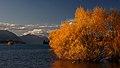 Autumn at Lake Tekapo NZ. (8670127501).jpg