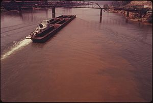 McKeesport Connecting Railroad Bridge - View from upstream in 1973