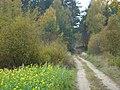 BRZEZINY - PIECZYSKA 20 - panoramio.jpg