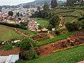 Back view of Ooty rose garden.jpg