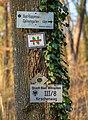 Bad Wimpfen - Bonfelder Wald - Wegzeichen und Markierungen an Eiche (2).jpg