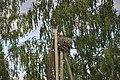 Baltā stārķa ligzda Nr.1681, Nīgrandes pagasts, Saldus novads, Latvia - panoramio (1).jpg