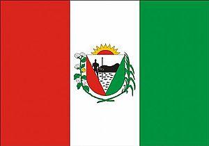 União dos Palmares - Image: Bandeirauniaodospalm ares