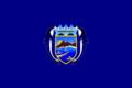 Bandera de Cerro Azul.png
