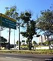 Barra Funda, São Paulo, Brasil - panoramio (13).jpg