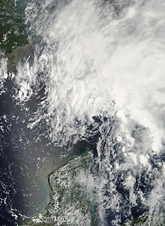 Tropical Storm Barry (2007) Atlantic tropical storm in 2007