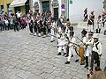 Battle of Porto reenactment (2) 2009.jpg