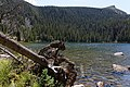 Bear Lake to Cub Lake (9762649492).jpg