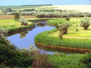 Bilozerka (river)