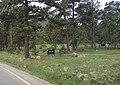 Bergen Park sign.jpg